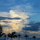 Sunrise at Key West by Sheryl Unwin