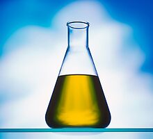 eco fuel in Erlenmeyer flask  by travel4pictures