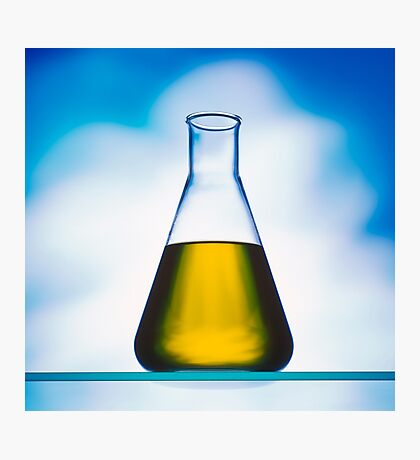 eco fuel in Erlenmeyer flask  Photographic Print