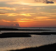 A Galveston Sunset by Judylee