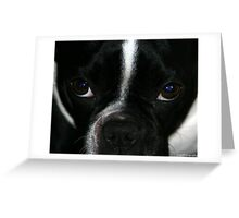 eye to eye with zoe Greeting Card