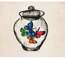 Jar of Butterflies Photographic Print