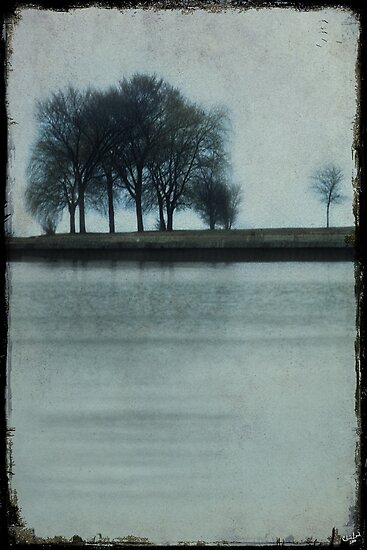 Lakeside Trees by Chris Lord