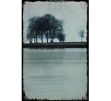 Lakeside Trees Photographic Print