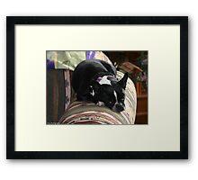comfy zoe Framed Print