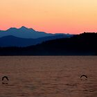Sunset over Stella Bay by James Hennman