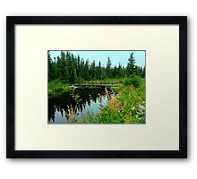Reflections on the Fen Framed Print
