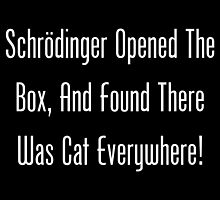 Schrodinger Opened The Box, And Found Cat Eveywhere! by geeknirvana