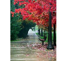 Outdoor Seating - Notre Dame Campus, South Bend, Indiana, USA Photographic Print