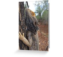 Central Bearded Dragon Greeting Card