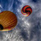 2010 Hot Air Balloon 66 by greg1701