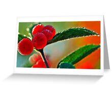 wet & wild Greeting Card