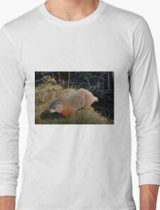 Groundhog Long Sleeve T-Shirt