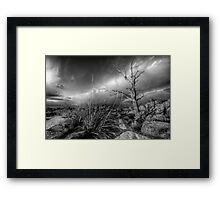 Tree Noir Framed Print