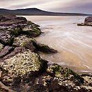 Nadgee Rocks by Tim Boehm