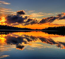 Nature's Paintbrush - Narrabeen Lakes,Sydney - The HDR Experience by Philip Johnson