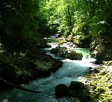 Majestic Stream - by Heather Ross by Bo-Ross