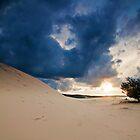Fraser Island Sandunes by Janette Rodgers