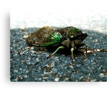 Mean Buggy Canvas Print