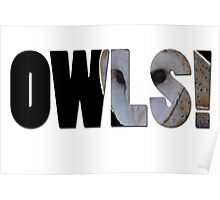 OWLS! Poster
