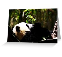 Panda, USA Greeting Card