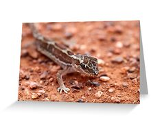 Box-patterned Gecko Greeting Card