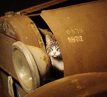 Mechanic Cat by kurrawinya