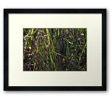 Green cobwebs Framed Print