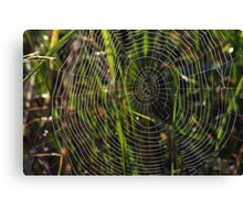 Green cobwebs Canvas Print
