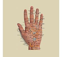 Hand with acupressure points Photographic Print