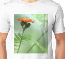 Orange Hawkweed and Wood Fern Unisex T-Shirt