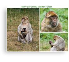Wish you where here Monkey Forest Canvas Print