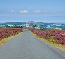 Road over the moors. by John (Mike)  Dobson