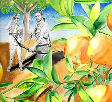 Shooting oranges by Genchaii