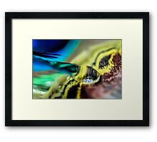 Slip Into Your Purse Framed Print