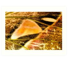 Seeping Into You Art Print