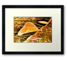 Seeping Into You Framed Print