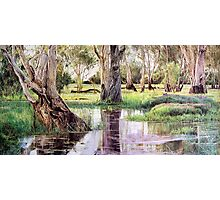 Reflections of Kakadu Photographic Print