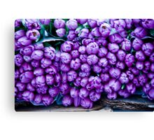 A Crush Of Tulips Canvas Print