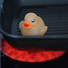 Travels of a Rubber Duck, Number 1: Too Hot! by Tracy Duckett