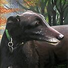"""Greyhound Commissioned Portrait 2 (""""Poppy"""") by Simon Groves"""