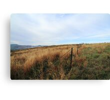 Barbed Wire Fence - Mt Parnassus Canvas Print