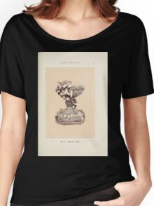 Floral Designs Series I a hand book for cut flower workers and florists John Horace McFarland 1888 0083 Vase or Font Women's Relaxed Fit T-Shirt