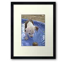 What Is That Thing? Framed Print
