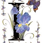 """I"" is for Iris. by Constance Widen"