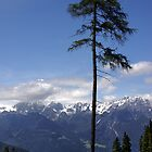 Overlooking Stubaier Alps  by AnnieSnel