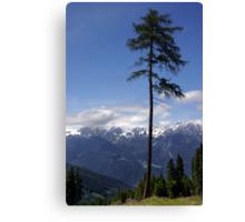 Overlooking Stubaier Alps  Canvas Print