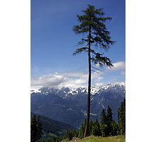 Overlooking Stubaier Alps  Photographic Print
