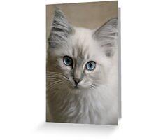 Old Blue Eyes... Greeting Card