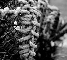Lobster Pot (B&W) - Seahouses Harbour, UK by Derek McMorrine
